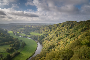 Beautiful autumn colored forest in Belgium with the Ourthe river
