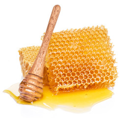 Honeycombs and wooden stick in the honey puddle.