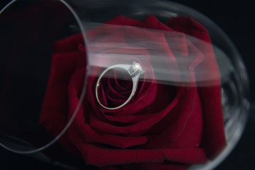 Wedding rings and roses in a glass of wine.