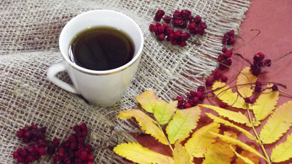 A Cup of fragrant tea and dried berries next to the colorful autumn leaves.
