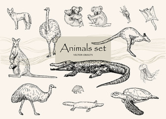 Vector hand drawn monochrome animals set. Pen style vector objects.