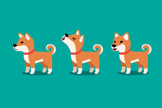 Set of vector cartoon character cute shiba inu dog poses for design.
