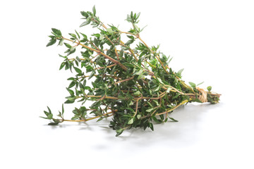 Thyme fresh herbs (Thymus vulgaris) shrub. Fine herb. Isolated on a white background.