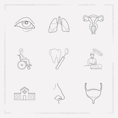 Set of organ icons line style symbols with bladder, nose, lung and other icons for your web mobile app logo design.