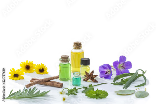Herbal medicine  Aroma oil bottle with various drugplant
