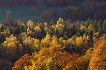 Majestic landscape with autumn forest hills. Sigulda, Latvia, Europe