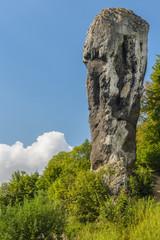 Fototapeta Limestone monadnock rock called