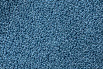 Texture of genuine leather, turquoise color, background. For your backdrop, with copy space