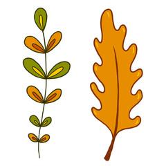 Leaves Autumn illustration. Hand drawn print. Sticker design.