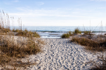 Sandy Footpath Leading to the Atlantic Ocean in South Carolina
