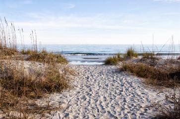 Sandy Footpath Leading to the Atlantic Ocean in South Carolina