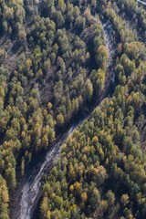 Forest and river view from the air in Alaska