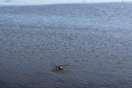 Waterproof Splash  Drone