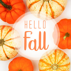 Hello Fall greeting card with frame of assorted autumn pumpkins over a white background