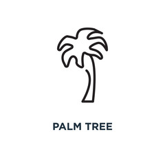 palm tree icon. palm tree concept symbol design, vector illustration