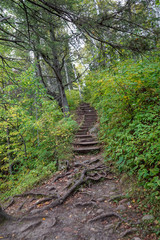 Rugged hiking trail in the deep woods at Jay Cooke State Park in Minnesota