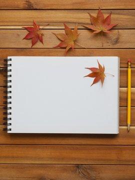 스케치북과 연필 그리고 단풍잎