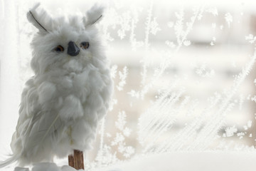 white polar owl on the background of a frozen window covered with beautiful patterns created by nature, a place for text