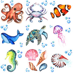 Watercolor illustration set of many differentent sea animasls