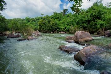 Downloading, Water, Autumn, Lake, Rainforest