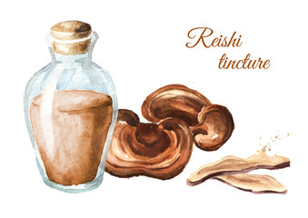 Herbal extract from dried lingzhi reishi mushroom. Watercolor hand drawn illustration, isolated on white background