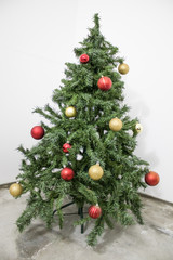Detailed green christmas tree with red and gold decorations in a white background