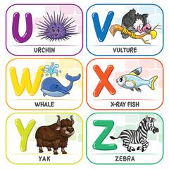Animal Alphabet U V W X Y Z