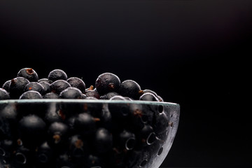 Photo of black currant in glass transparent cup