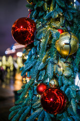 Picture of New Year's decorated fir trees in street