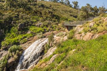Mundaring State Forest Perth WA Landscape