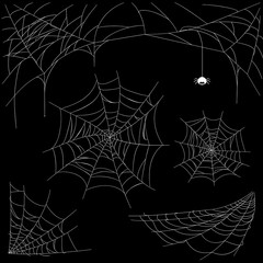 set of cobweb isolated on dark background. Spiderweb collection for halloween.