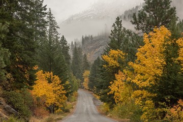 A foggy fall morning drive in the Cascade mountains