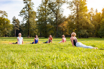 Instructor performing yoga exercise with mixed age group of people outside in the park