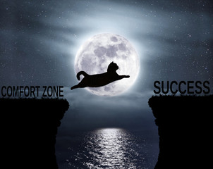 The brave cat jumps over the abyss. Comfort zone. Success. Positive attitude and motivation.