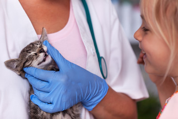 Veterinary doctor checking the teeth of a small kitten - little girl watching with real interest