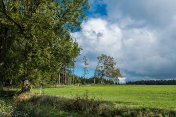 Wiese, Wald, blauer Himmel, Wolken