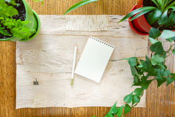 Leave a note on Blank Sketch Pad, Pencil and House Plants Flat Lay