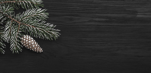On a black background, a fir tree with a cone, horizontally. Space for a holiday message. Top view.