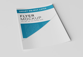 Paper on White Background Mockup