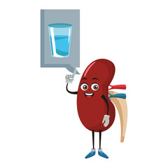 Kidney funny cartoon