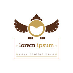 Abstract owl logo template. Brown color. Owl icon for business company and educational institute. Vector illustration.