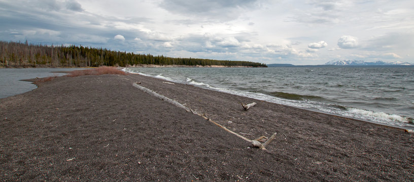 Narrow strip of land with driftwood called Hard Road to Follow on the banks of Yellowstone Lake in Yellowstone National Park in Wyoming United States