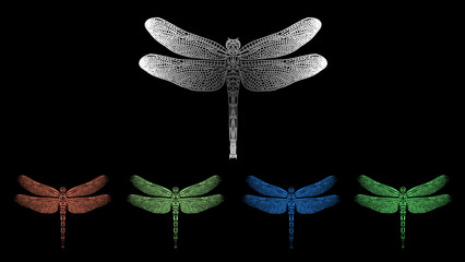 Dragonfly (damselfly) abstract low poly wireframe isolated on black symmetrical vector illustration. Insect set with geometry triangle. Polygonal style trendy abstract concept.