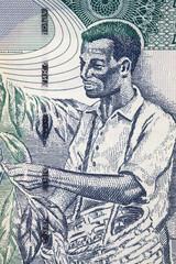 Coffee harvest, portrait from Ethiopian money