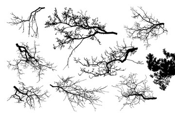 Realistic set of tree branches silhouette