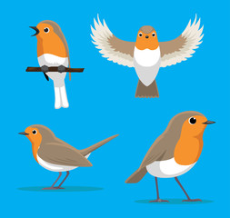 Cute European Robin Cartoon Vector Illustration