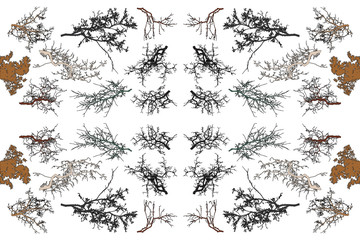 Seamless pattern with tree branches silhouette (Vector illustration).
