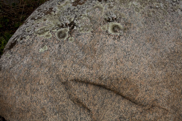 stone with eyes and mouth