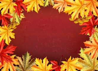 Thanksgiving Day Colored Card