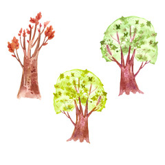 Hand drawn watercolor autumn trees